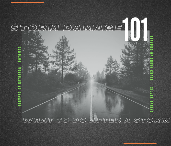 text: Winter Storm Damage 101: What To Do After A Storm