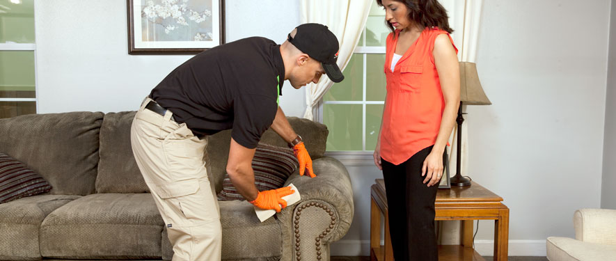 Bethesda, MD carpet upholstery cleaning